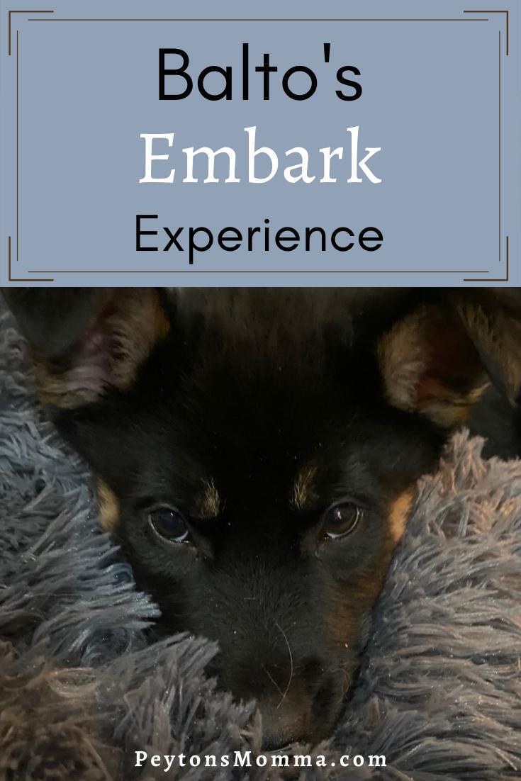 Balto's Embark Experience - Peyton's Momma™